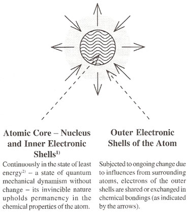 Atomic Core and Outer Electronic Shells of the Atom